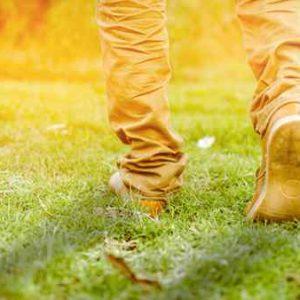 Walking The Spiritual Talk