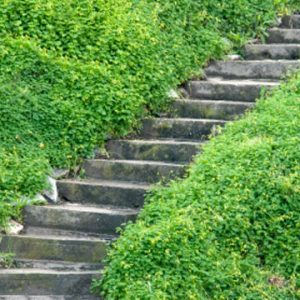 The Stairway of Spirituality