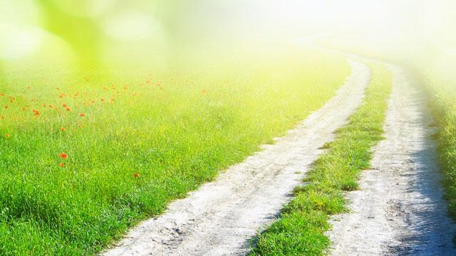 Choosing the Path of Love